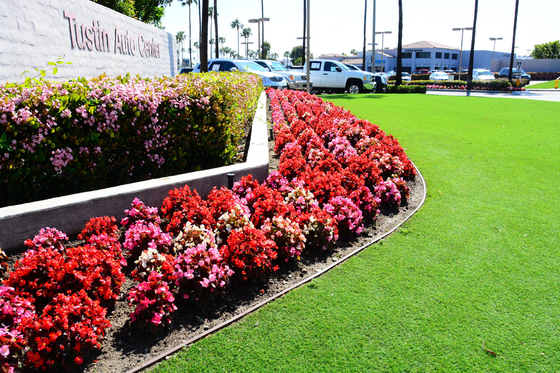 artificial turf and artificial turf edging with flowers in front of car dealership sign