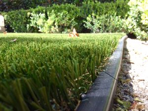 artifical turf border can be glued to hardscape for easy installation