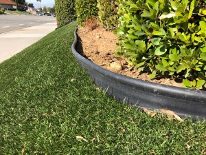 fake grass edging around a bed with shrubs